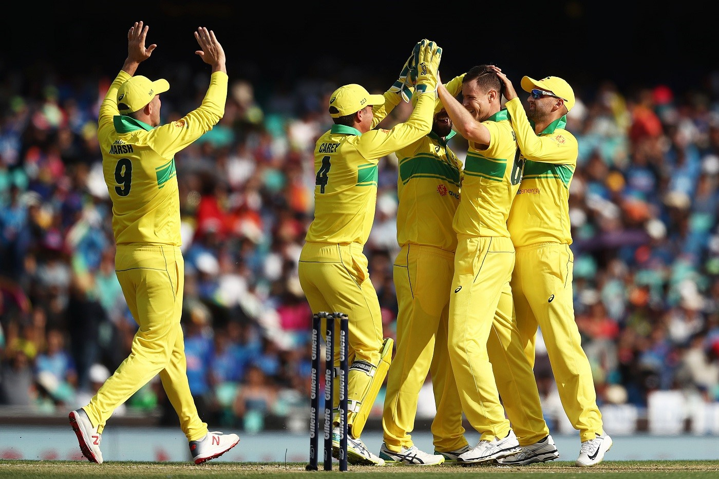 australia got wickets