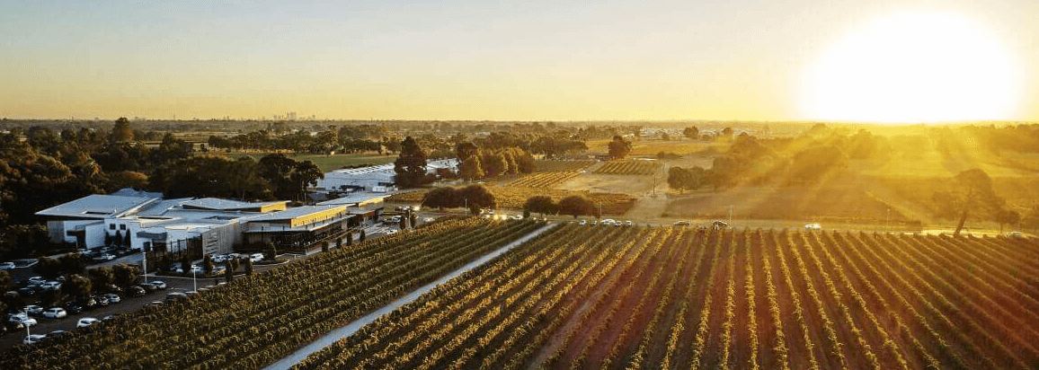 Discover Swan Valley Wineries: The best of Perth