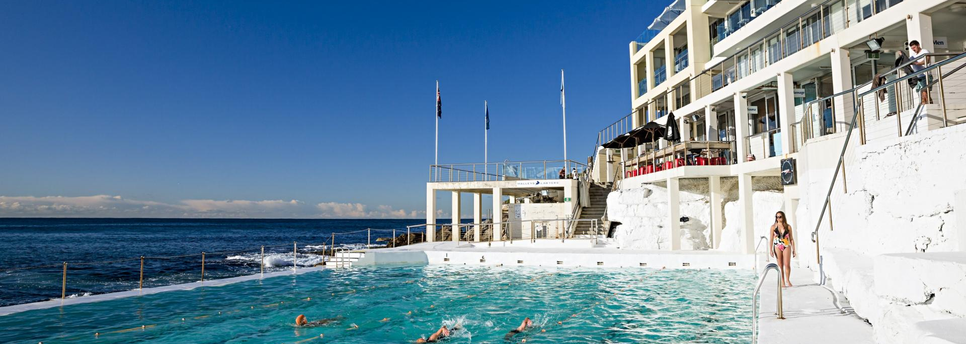 Things to do and top attractions in Bondi